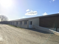 Salle Paddock